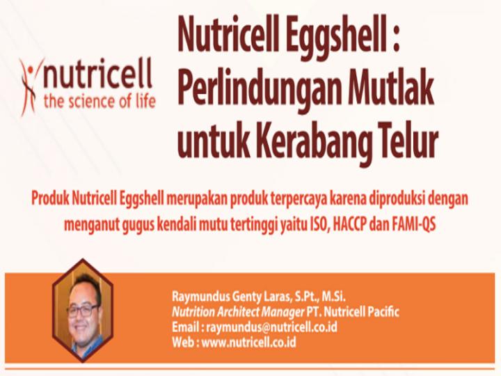 Nutricell Eggshell : Perlindungan Mutlak untuk Kerabang Telur